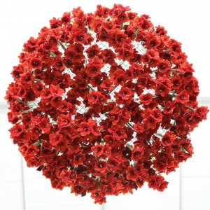 Floraart - Međunarodna Vrtna Izložba